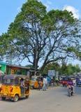 Town of Malindi,  Kenya Royalty Free Stock Photography
