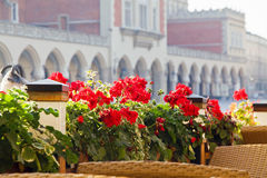 Town market cafe in Cracow Stock Images