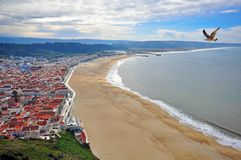 Town at the Pacific ocean in Portugal Stock Photos