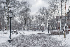 Town park in winter Stock Photos