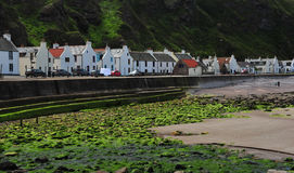 Town of Pennan Royalty Free Stock Photos