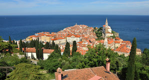 Town Piran, Slovenia Royalty Free Stock Photos