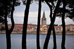 Town of Porec pine trees view Stock Image