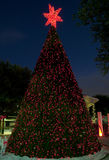 Town's Outdoor Christmas Tree Royalty Free Stock Photos