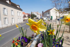 Town Sreet France Royalty Free Stock Images