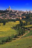 Town with sunflowers. The town of Todi in Umbria over a hill with sunflowers Stock Photography