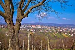 Town of Sveti Ivan Zelina Stock Photo