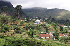 Town on tea plantation Royalty Free Stock Photo