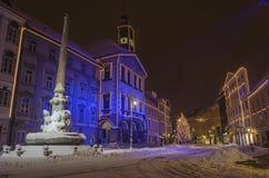Townhall de Ljubljana Fotos de archivo