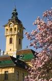 Townhall di Szeged fotografia stock libera da diritti
