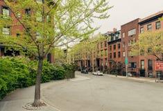 Townhouse αρενησθας δε θολορ οσθuρο κατοικημένη οδός στα ύψη του Μπρούκλιν Στοκ εικόνες με δικαίωμα ελεύθερης χρήσης