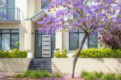 Townhouse and Jacaranda Royalty Free Stock Photos