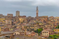 Townscape of Siena. Italy, medieval, travel, tourism royalty free stock images
