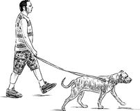 A townsman walks with his pet Stock Photos
