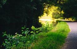 Towpath obok kanału zdjęcie royalty free