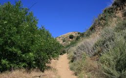 Towsley Canyon Trail Stock Image