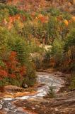 Toxaway-Fluss im Herbst stockbilder