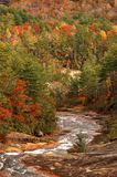 Toxaway rzeka W jesieni Obrazy Stock