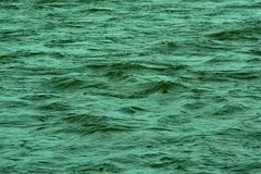 Green rippling water surface background royalty free stock photography
