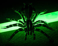 A toxic and radioactive spider. A conceptual image of toxic and radioactive spider Stock Images