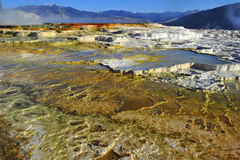 Toxic sulphur steps, volcanic activity, yellowstone nat park. Colorful boiling toxic thermal pool / geyser steps created from volcanic seismic activity Royalty Free Stock Images