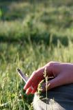 Toxicomanie et émissions de fumage Images stock