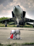 Stuffed bunny toys and military airplane stock images