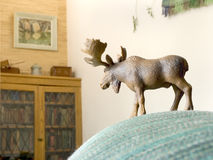 Toy animal moose watches over his domain Royalty Free Stock Images
