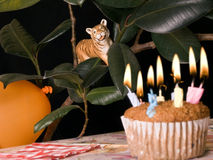 Toy animal tiger watches a birthday party Stock Photos