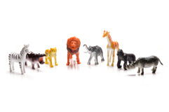 Toy animals. On white background Royalty Free Stock Images