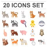 Toy animals cartoon icons in set collection for design. Bird, predator and herbivore vector symbol stock web. Toy animals cartoon icons in set collection for Stock Images