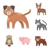 Toy animals cartoon icons in set collection for design. Bird, predator and herbivore vector symbol stock web. Toy animals cartoon icons in set collection for Royalty Free Stock Photos