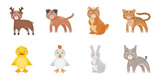 Toy animals icons in set collection for design. Bird, predator and herbivore vector symbol stock web illustration. Stock Photo