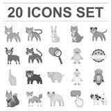 Toy animals monochrome icons in set collection for design. Bird, predator and herbivore vector symbol stock web. Toy animals monochrome icons in set collection Stock Photo