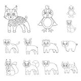 Toy animals outline icons in set collection for design. Bird, predator and herbivore vector symbol stock web. Toy animals outline icons in set collection for Stock Images