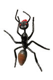 Toy Ant Royalty Free Stock Photos