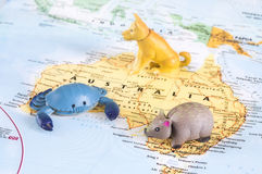 Toy Australian animals on map. A photo of toy Australian animals on the map royalty free stock photo