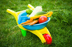Toy barrow with vegetables Royalty Free Stock Photos