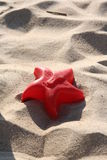 Toy on the beach. A red plastic star on the sand Stock Photos