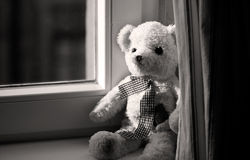 Toy bear Stock Photography