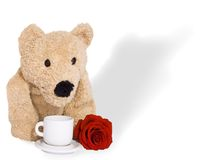 TOY BEAR. Holding red rose royalty free stock image