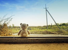 Toy bear. Plush toy on a window, in a house which is in the field Stock Photos