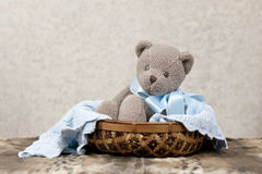 Toy Bear In A Basket Royalty Free Stock Photo