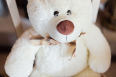 Toy bear Royalty Free Stock Images
