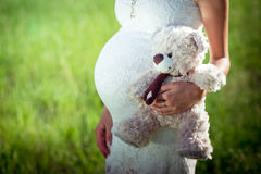 Toy bear cub against a stomach of the pregnant woman. Stock Photo