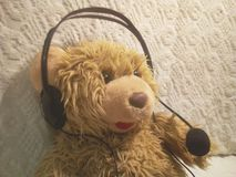 A toy bear cub responds by a headset - headphones and a microphone royalty free stock image