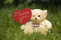 Toy bear holding a heart on the grass. Toy yellow little bear holds a red heart on the grass Royalty Free Stock Image