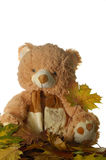 Toy bear with leaf. Toy bear holding yellow leaf Stock Image