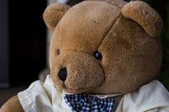 Toy Bear på tabellen Arkivfoton