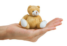 Toy bear on a palm Stock Images